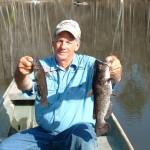 Most People Call Bullheads Catfish