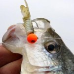 This jig will catch crappie