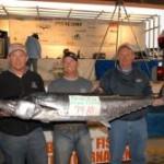 Big King Fish Mackerel