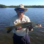 Catch snook like this one on lures