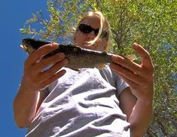 Catching A Robo Fish