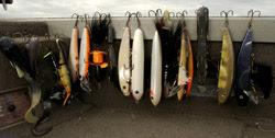Lures to catch  muskie