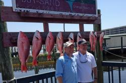 Good catch of red snapper