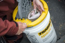 Keep your live bait healthy