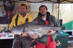 Big catfish from a TVA lake