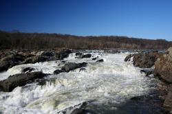 Free Flowing Stream
